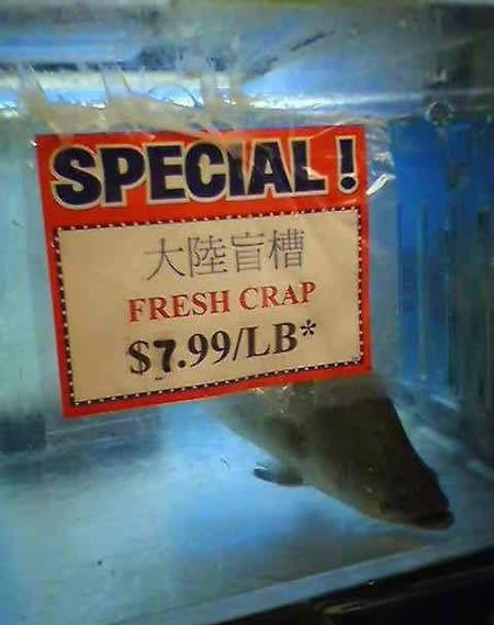 Funny English: Cut the carp