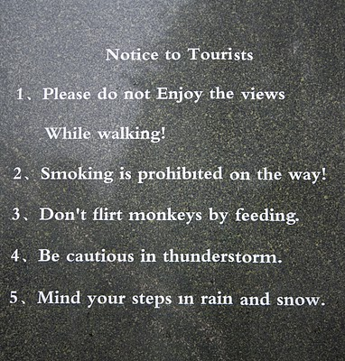 Funny English: Flirty monkey
